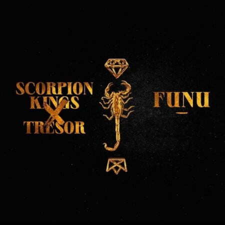 Music: DJ Maphorisa & Kabza De Small - Funu (feat.  Tresor)