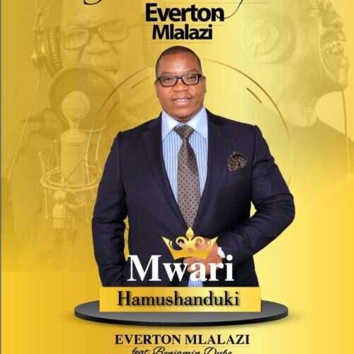 Everton Mlalazi - Mwari Hamushanduki (feat.  Benjamin Dube)
