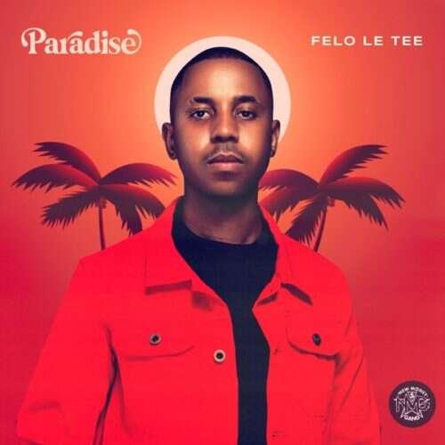 Felo Le Tee - Nje Nje (feat.  Mr JazziQ, Reece Madlisa, Zuma, Mpura, DJ Maphorisa & Kabza De Small)
