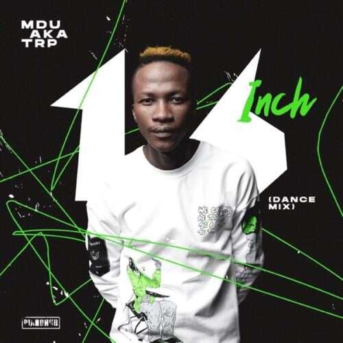 MDU aka TRP & DJ Maphorisa - Egoli (feat.  Daliwonga & Aymos)