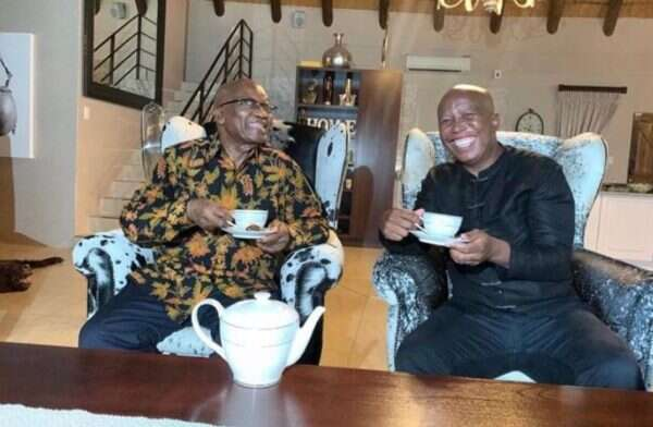 People react to Viral Pictures of Julius Malema & Jacob Zuma having Tea together